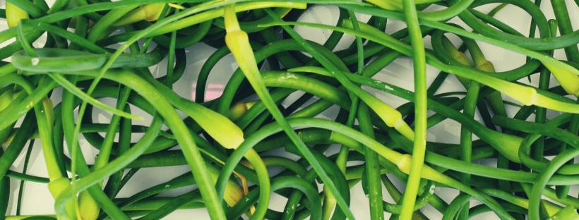 Pesto de fleur d'ail sans gaspillage